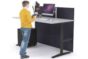 sit and stand desk ergonomic assessment